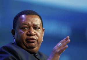 OPEC acts in the view of avoiding 'energy crisis'